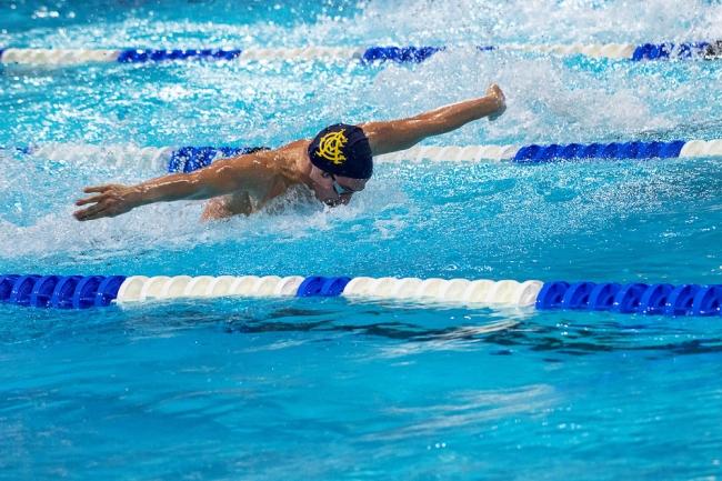 Aligné à la Swim Cup de Lausanne, Piero Codia a terminé l'année sur des résultats satisfaisants. © leMultimedia.info / Oreste Di Cristino [Lausanne]